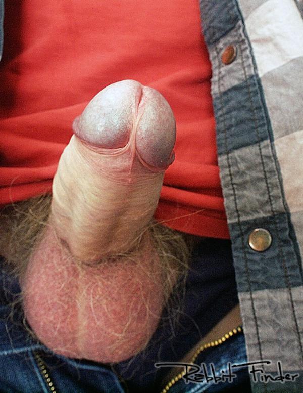 vidéos sexe amateur sexe d un homme